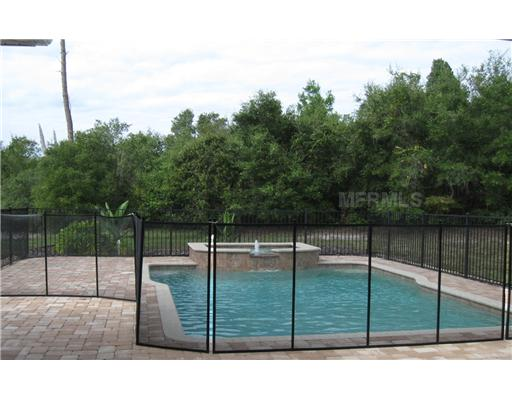 Debary house for sale beautiful pool home 262 palmetto for Heated pools for sale